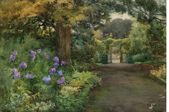 The Lilac Phlox, Kilmurry, Co. Kilkenny, 1912 - Mildred Anne Butler