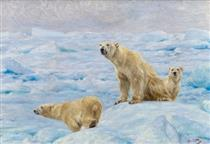 Three Polar Bears - Рихард Фризе