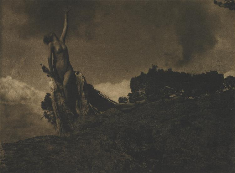 Soul of the Blasted Pine - Anne Brigman