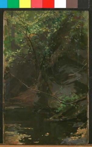 Tůň Pod Skalou - Maximilian Pirner