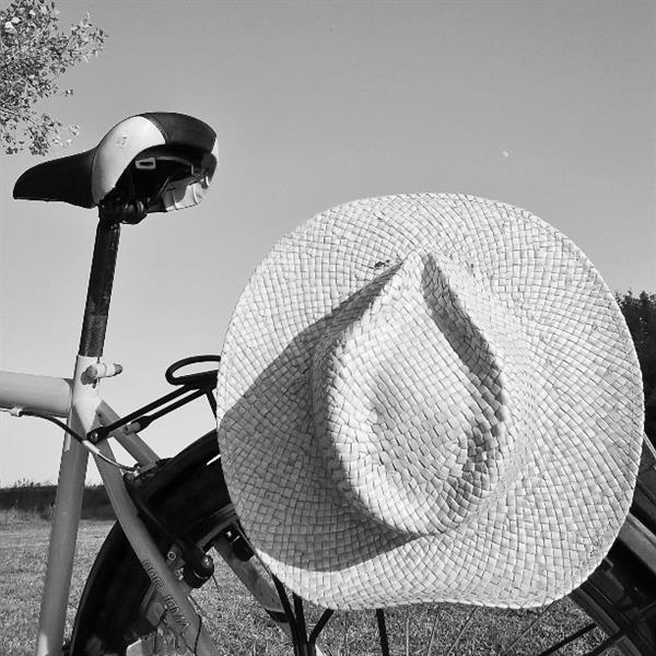 The bicycle, the hat and the moon, 2016 - Alfred Freddy Krupa