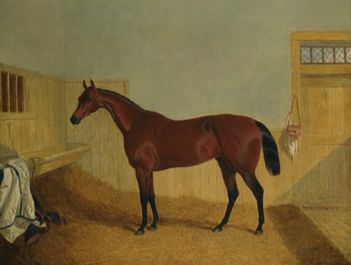 Mr. William Orde's Bay Filly 'beeswing' in a Stable - John Frederick Herring Sr.