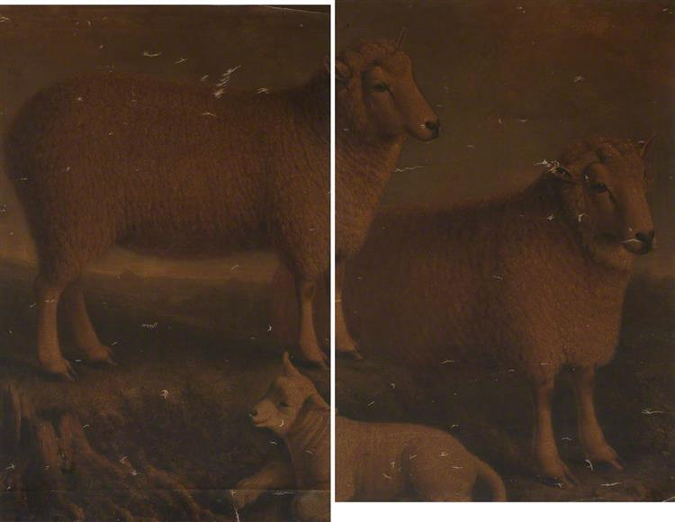 Ryeland Ram, Ewe and Lamb (diptych) - William Shiels