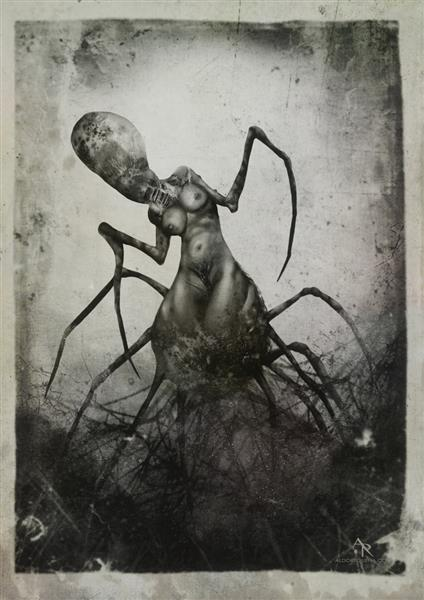 Necrophagia Latrodekta - A. R. Valgorth