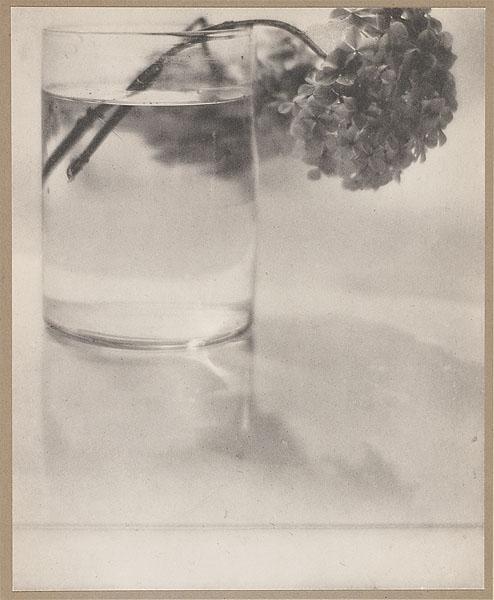 Still Life, 1908 - Adolph de Meyer