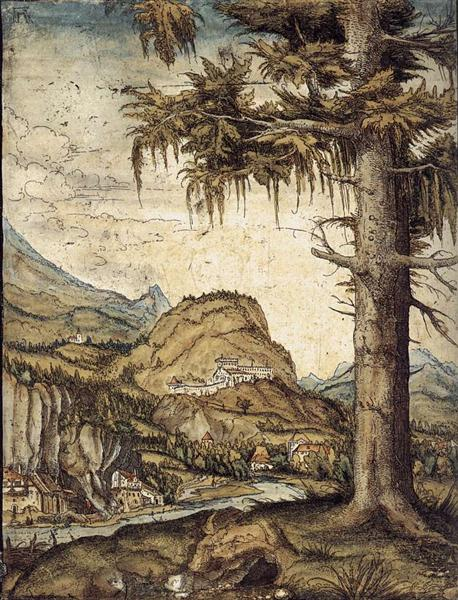 The Large Spruce - Albrecht Altdorfer