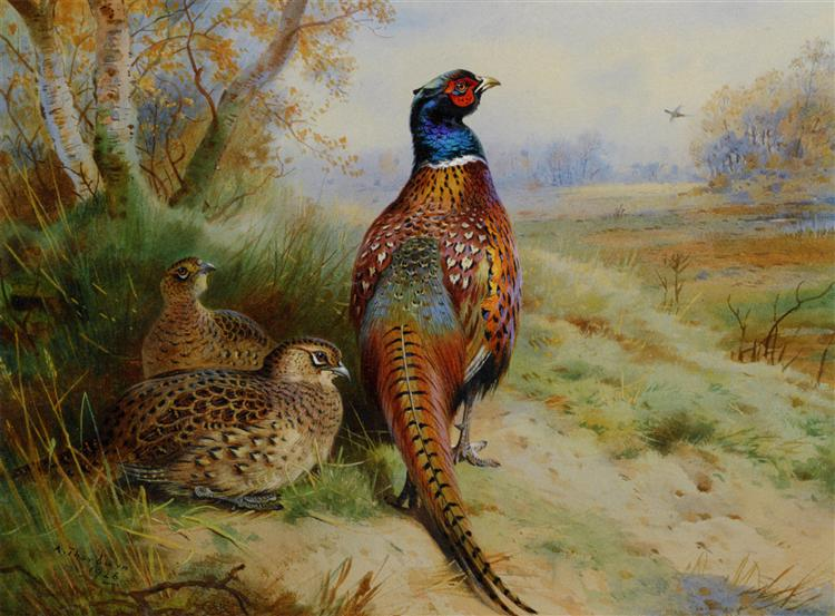 Cock and Hen Pheasant at the Edge of a Wood, 1926 - Archibald Thorburn