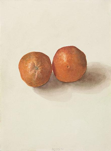 Two Oranges, 1975 - Avigdor Arikha