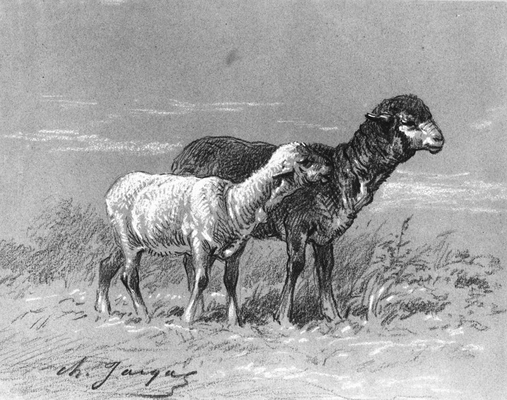 Ewe and Lamb, 1860