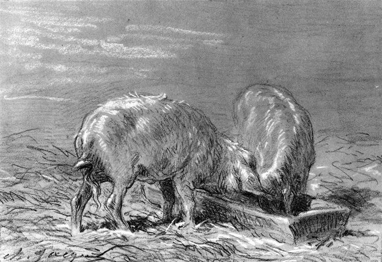 Two Pigs Eating from a Trough - Charles Jacque