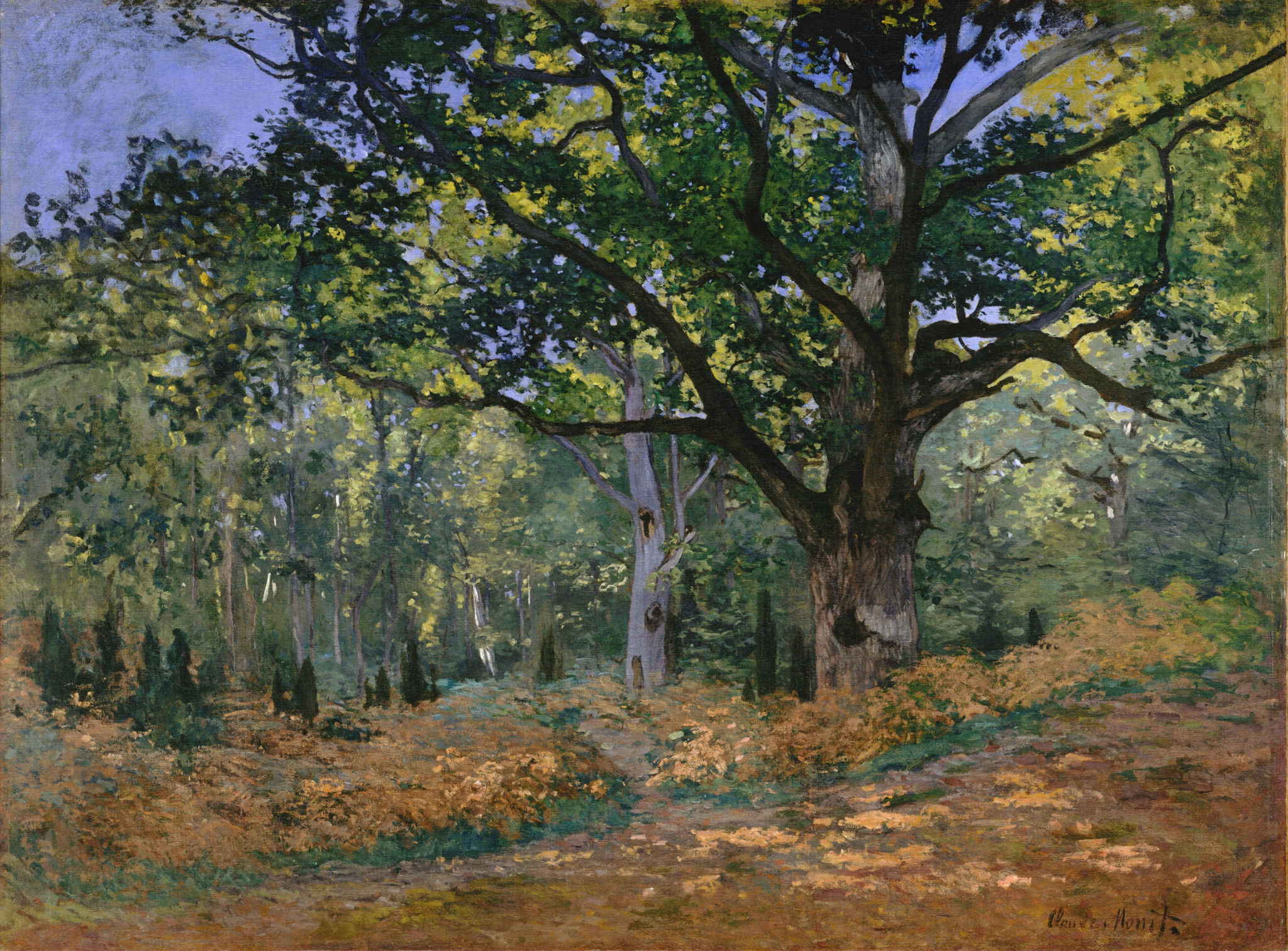 The Bodmer Oak, Fontainebleau, 1865