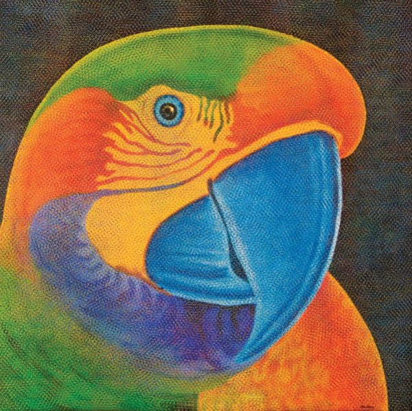 Papagália - Claudio Tozzi