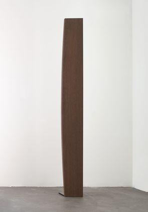 Curve XXXVI, 1984 - Ellsworth Kelly