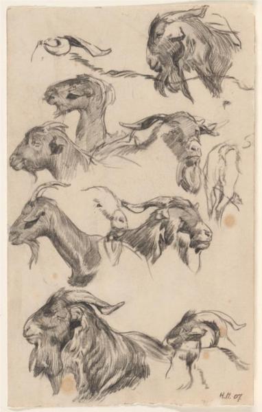 Study of goats, 1907 - Hans Heysen