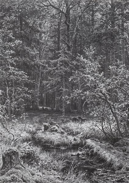 Forest swamp, 1889 - Ivan Shishkin