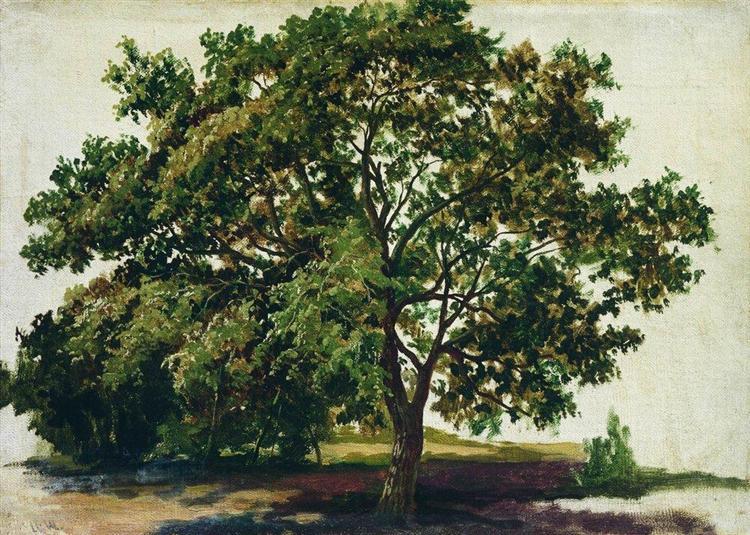 Oak, 1889 - Ivan Shishkin