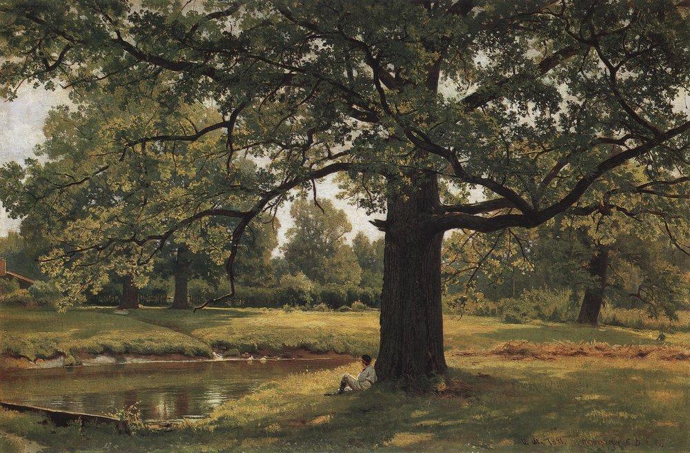 Oaks In Old Peterhof Ivan Shishkin Wikipaintings Org