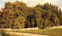 Woods behind the fence - Ivan Shishkin