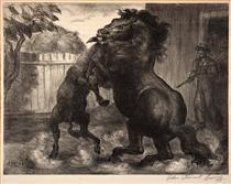 Stallion and Jack Fighting - Джон Стюарт Керрі
