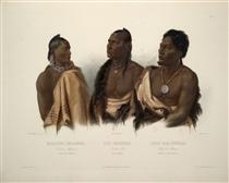 A Missouri Indian, an Oto Indian and the Chief of the Puncas, plate 7 from 'Travels in the Interior of North America' - Karl Bodmer