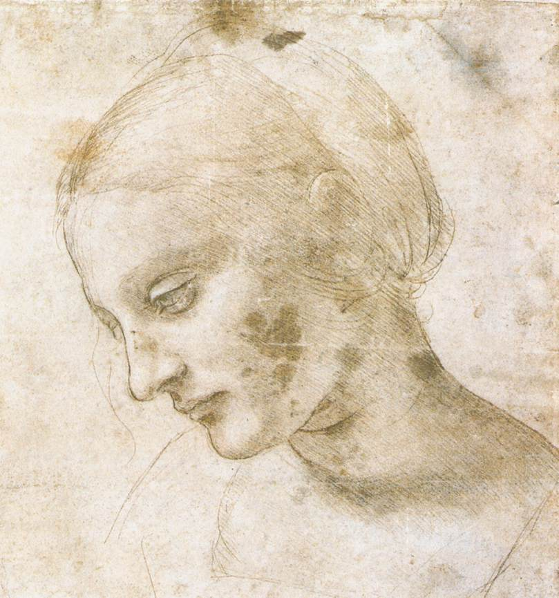 Study of a woman's head, 1490