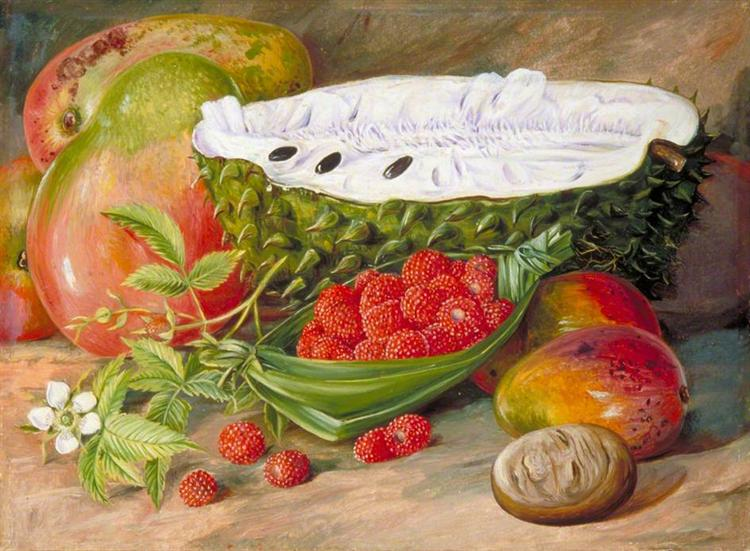Fruit Grown in the Seychelles, 1883 - Marianne North