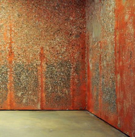 Mur de poils de carotte, 2000 - Michel Blazy