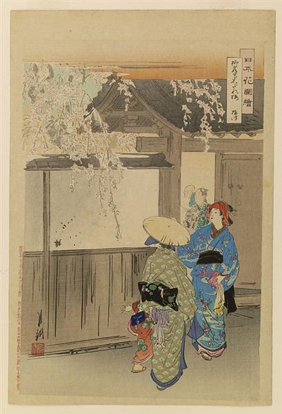 Nihon hana zue, 1896 - Ogata Gekko