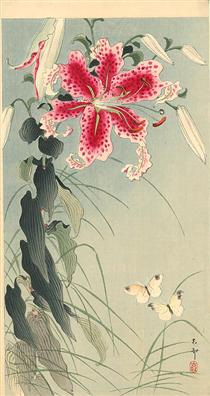 Lily and Butterflies - Ohara Koson