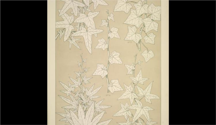Leaves and Flowers from Nature Ornament no. 3. Ivy-leaves, full size - Owen Jones