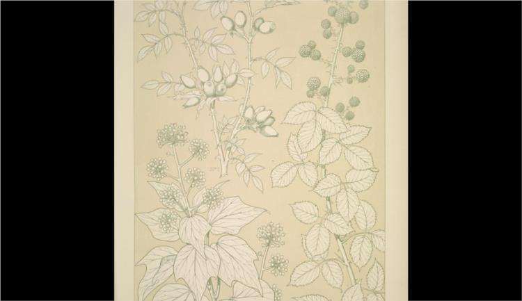 Leaves and Flowers from Nature Ornament no. 6. Wild rose, Ivy and Blackberry full size - Owen Jones