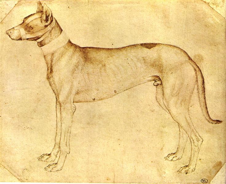 Dog - Пизанелло