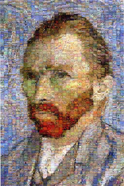 Vincent van Gogh - Robert Silvers