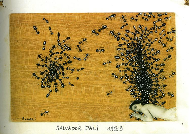 The Ants, 1929 - Salvador Dali