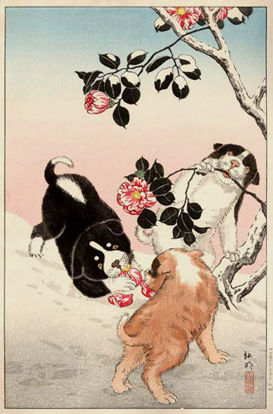 Camellia and Puppies in Snow, 1936 - Shotei Takahashi