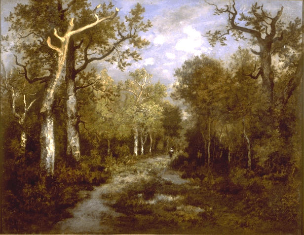 The Forest of Fontainebleau, 1867 - Theodore Rousseau