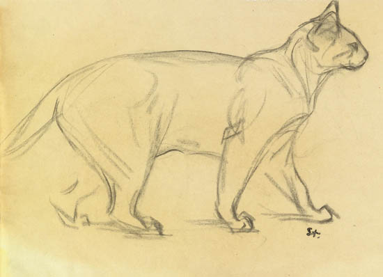 Study of a cat walking - Theophile Steinlen