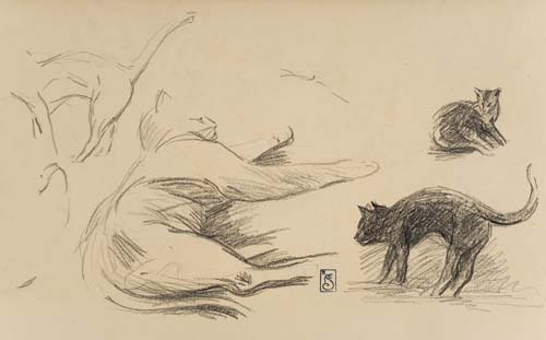 Study of cats - Theophile Steinlen