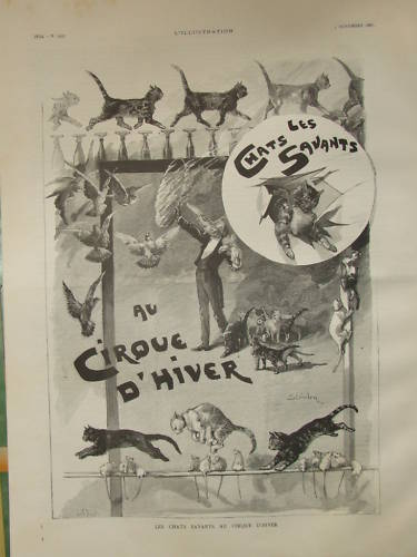 Trained cats in circus - Theophile Steinlen
