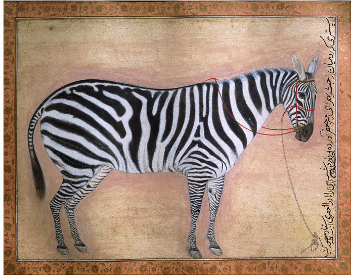 Zebra, 1621 - Ustad Mansur