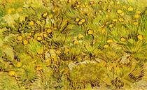 A Field of Yellow Flowers - Vincent van Gogh