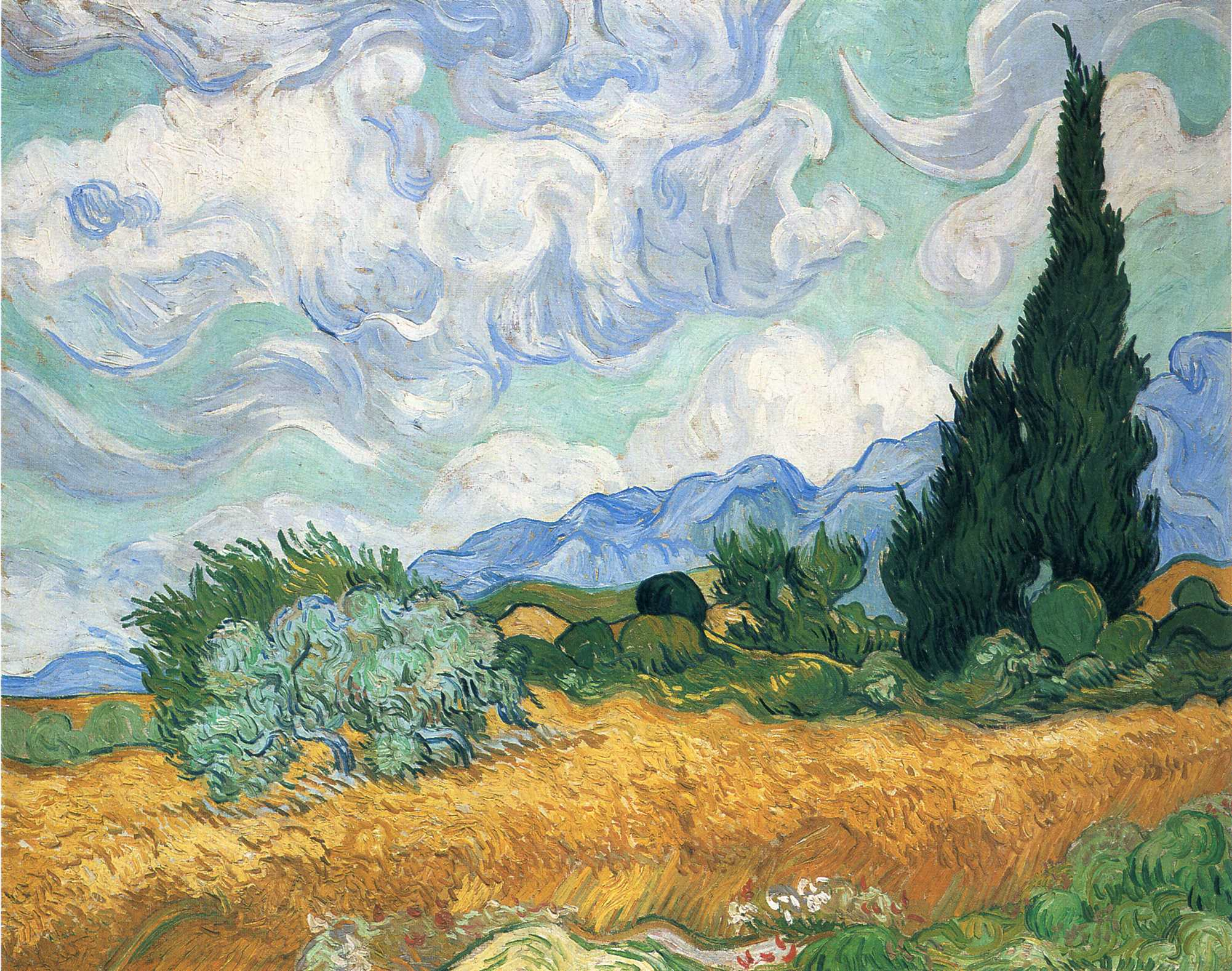 an analysis of wheat field and cypress trees by vincent van gogh The glowing wheat field, the olive trees of subtle gray in which all the colors of the  picture seem to be mingled, the shaggy wavering cypresses, and the turbulent.