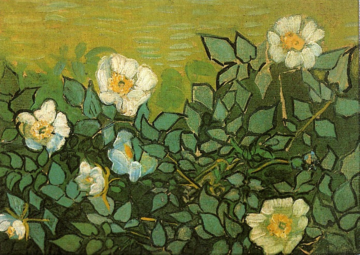 Wild Roses 1890 Vincent van Gogh WikiArt